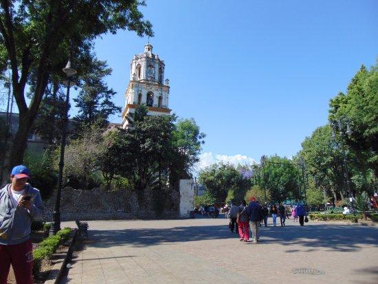 Vista del campanario desde el jard n hidalgo picture of for Camping el jardin san juan
