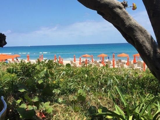 Four Seasons Resort, Palm Beach : photo0.jpg