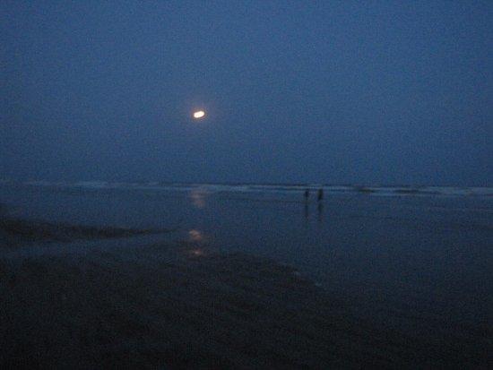 写真Mandarmani Beach枚