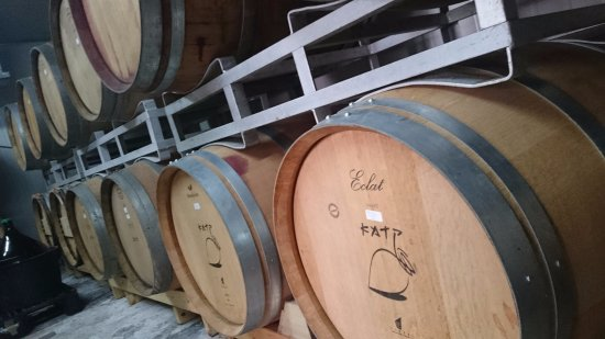 District Sud, Israël : The wine is aged in barrels 8-28 months
