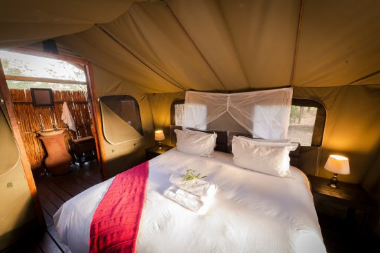 Timbavati Private Nature Reserve, South Africa: Safari Tent with en-suite bathroom