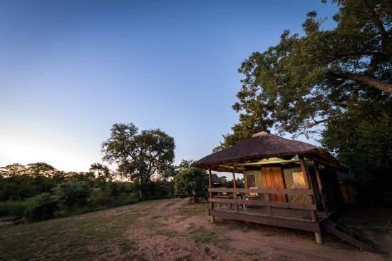 Timbavati Private Nature Reserve, South Africa: view of one of the safari tents