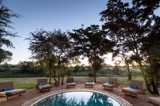 Timbavati Private Nature Reserve, South Africa: Small pool at Shindzela