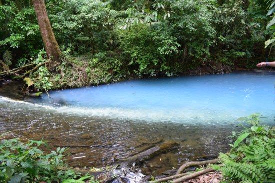 Tenorio Volcano National Park, Costa Rica: The mixing point