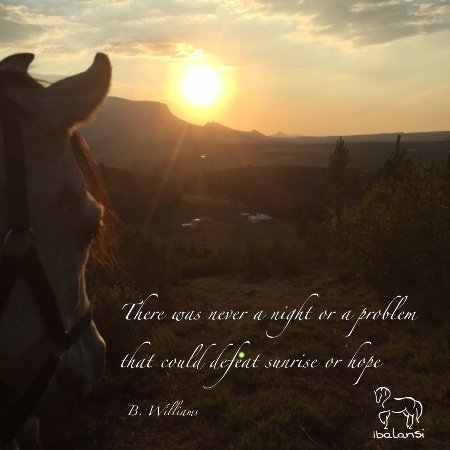 Ibalansi Horse Center: Join us on a sunrise, sunset, all-day or full moon ride.