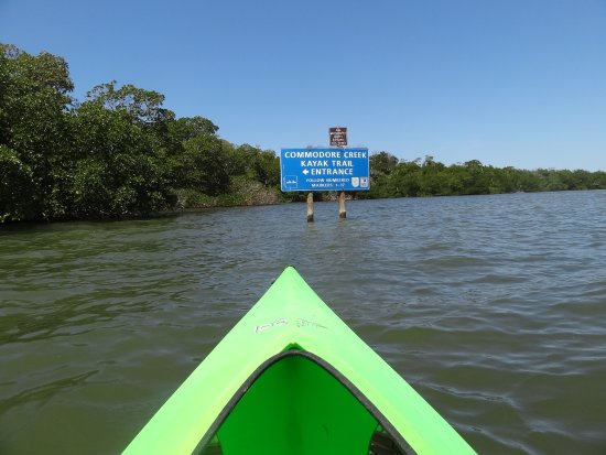 Entering The Mangrove Trail Picture Of Tarpon Bay