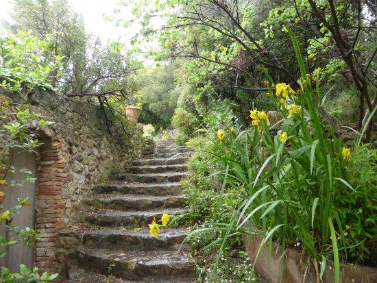 Chemin vers la piscine - Picture of Jardin Du Domaine D\'orves, La ...