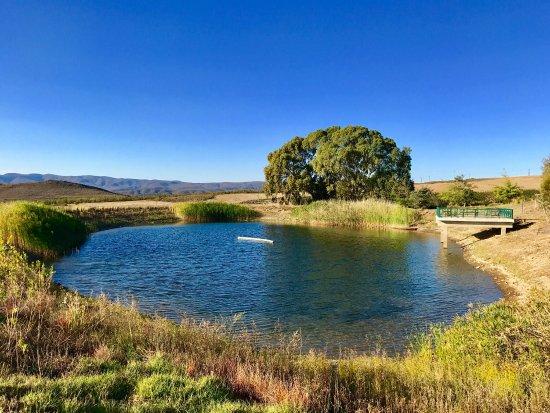 Nice break on a Karoo Farm