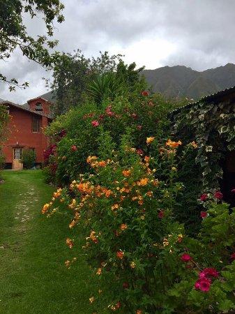 Hospedaje Los Jardines: photo5.jpg
