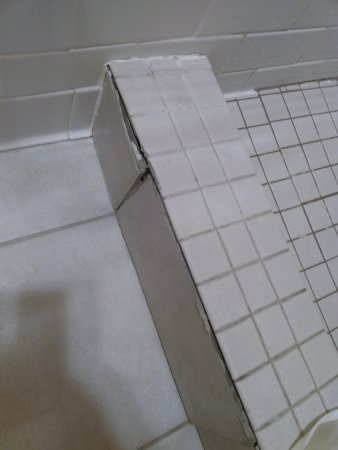 Bathroom Tiles Loose loose tiles and mold in the bathroom - picture of windsor inn