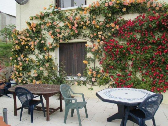 Tuc De St Paul: Lovely garden