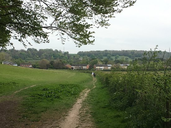 ‪Chiltern Walks‬