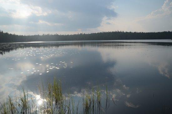 Saarijärvi, Finlandia: Hyvin matala ranta