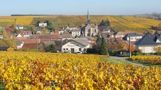 Étoges, France : Champagne Verrier et Fils