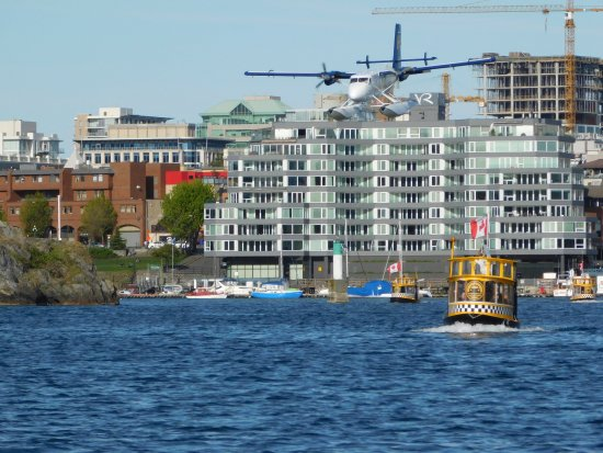 Float Plane Tour Victoria Bc