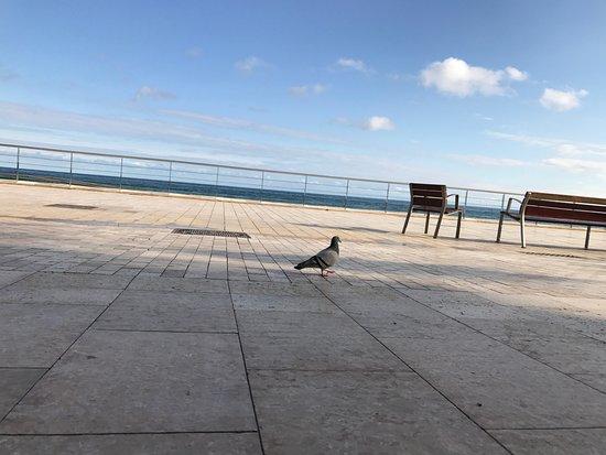 San Sebastian Playa Hotel Photo