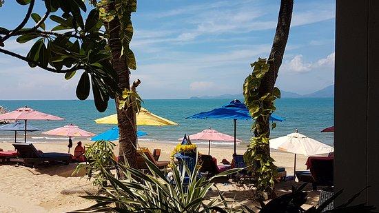 Hacienda Beach Resort : Vue de la terrasse de notre bungalow.... Sympa au réveil !