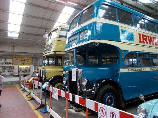 Wallasey and Birkenhead buses.