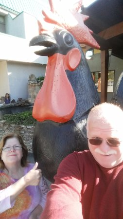 Black Rooster Bar and Grill : Outside with the rooster