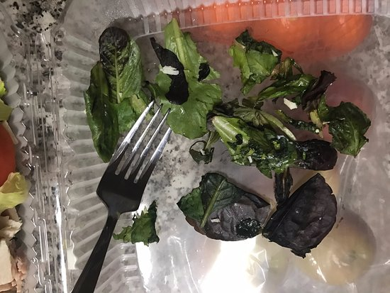 Reedsport, OR: a few of the rotten pieces of lettuce I picked out