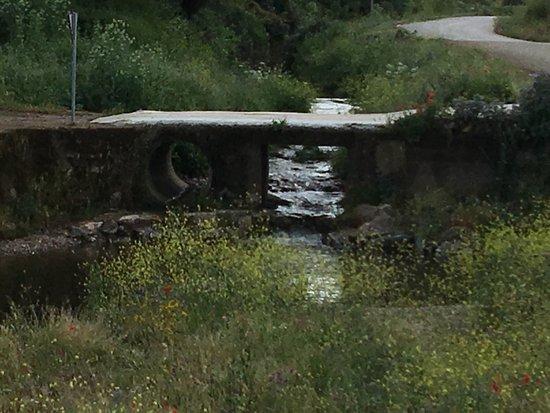 Fuentes de Leon, İspanya: photo3.jpg