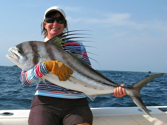 Boca Chica, Panamá: Another nice Rooster fish