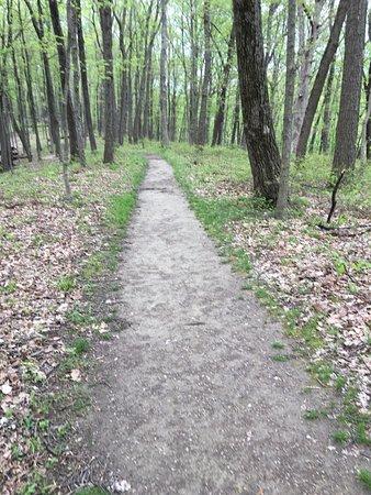 Nashville, IN: Trail 6 path from Buffalo Ridge to nature walk...