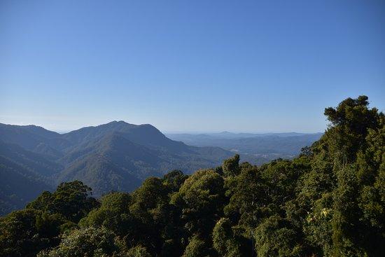 Dorrigo, Australia: The view from the Skywalk