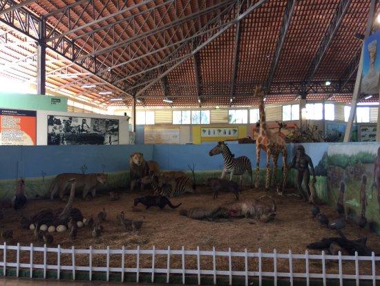 Museu Memorial do Cerrado : photo0.jpg