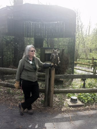 Glen Ellyn, IL: Willowbrook Wildlife Center