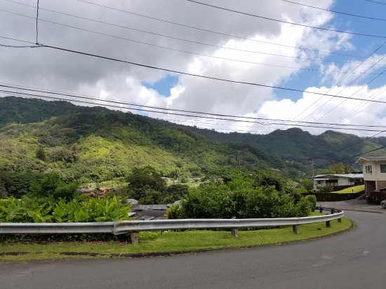 Manoa Falls: Neighborhoods just before the trail area. Worth it to park here and walk up.