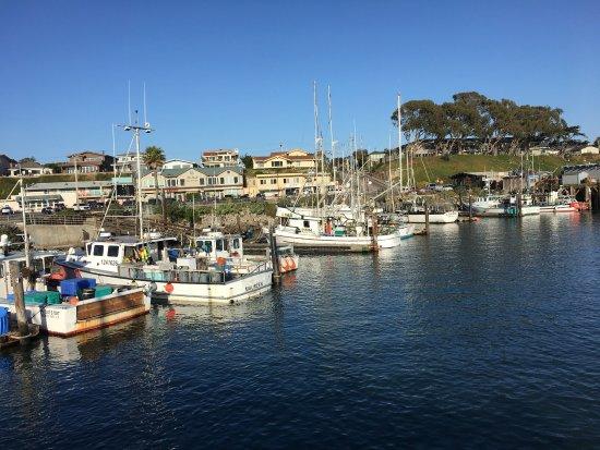 Best Western Hotels Morro Bay Ca