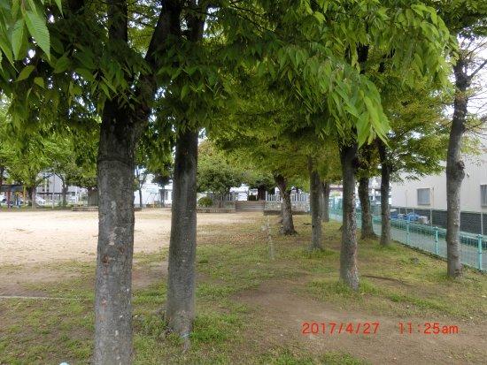 Chuji Tenjin Park