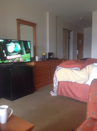 Hotel & Spa Etoile-sur-le-Lac: Good, flat screen television