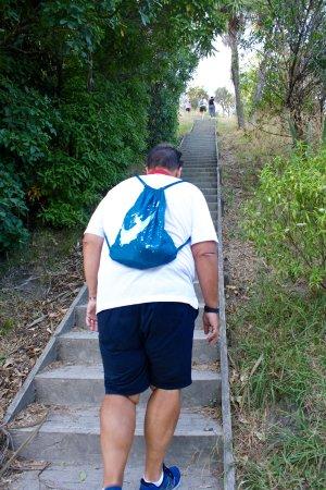 Gisborne, Nueva Zelanda: Step climb to top