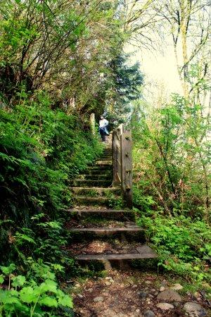 Burnaby, Canadá: 500-step trail