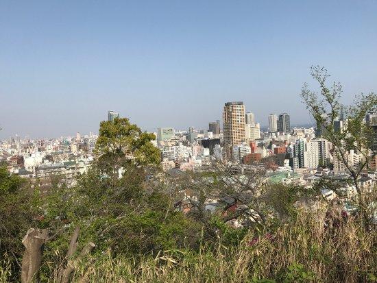 Suwayama Park
