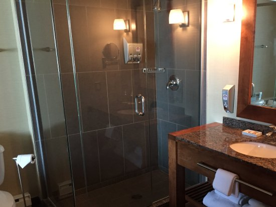 Hotel Chateau Laurier: Large and functional shower