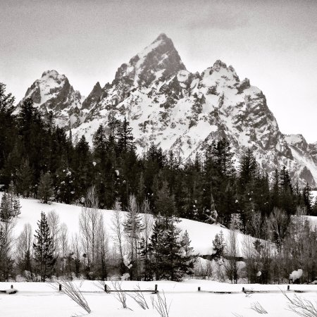 Turpin Meadow Ranch: The view of the Tetons from the crosscountry trails in front of the lodge. Photo @robkingwill