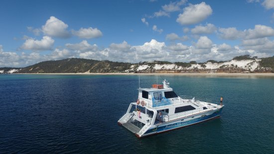 Freedom Whale Watch: Freedom III has had a makeover ready for 2017 whale watch season