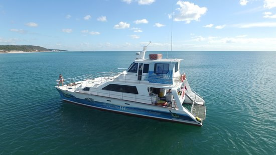 Freedom Whale Watch: Freedom III with a new paint job and more seating
