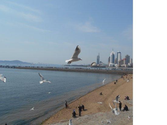 Qingdao Second Beach Photo