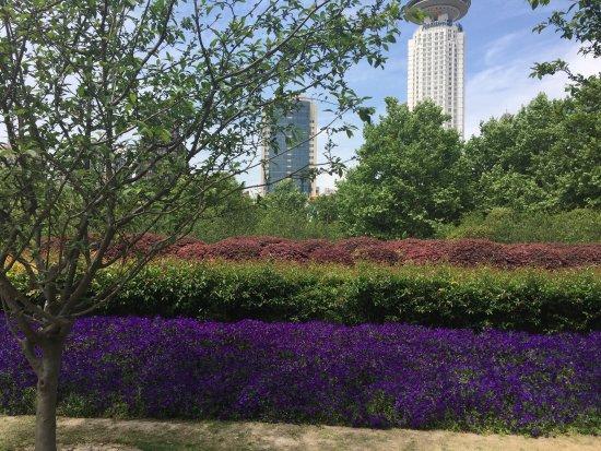 Shangqiu, Kina: photo2.jpg