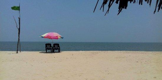 Marari Beach: Umbrellas providing welcome relief from the sun