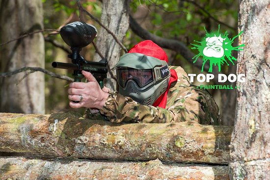 Top Dog Paintball Ltd: Top Dog Paintball Norwich.  The biggest and best value for money Paintball venue in Norfolk.