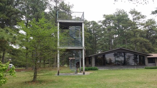 Janes Island State Park: tower