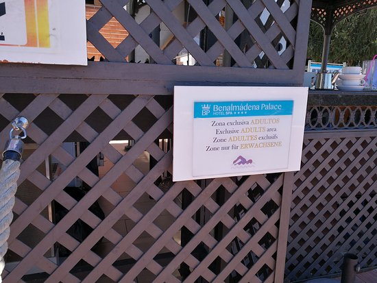 Hotel & Spa Benalmadena Palace: Kids are not welcome in the pool. There's a tiny kids pool.