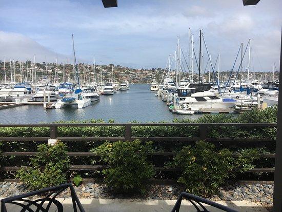 Best Western Plus Island Palms Hotel & Marina: Zimmer mit Marina Blick