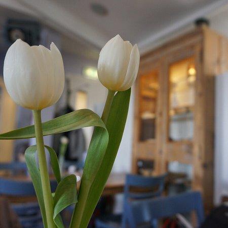 Bruinisse, The Netherlands: Super toll! Besser geht es nicht!