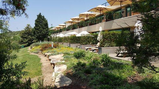 Carmel Forest Spa Resort by Isrotel Exclusive Collection: חדרי גן הפונים לבריכה